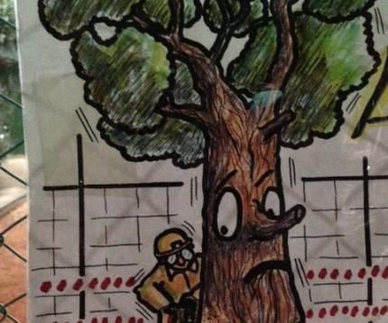 Pioppi, platani e magnolie..tutela del verde nella Milano di Expo
